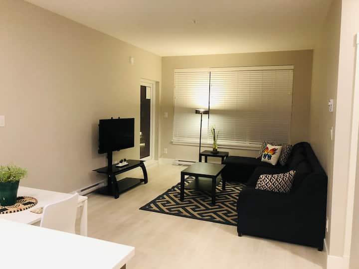 A Modern & Lavish Brand New Home