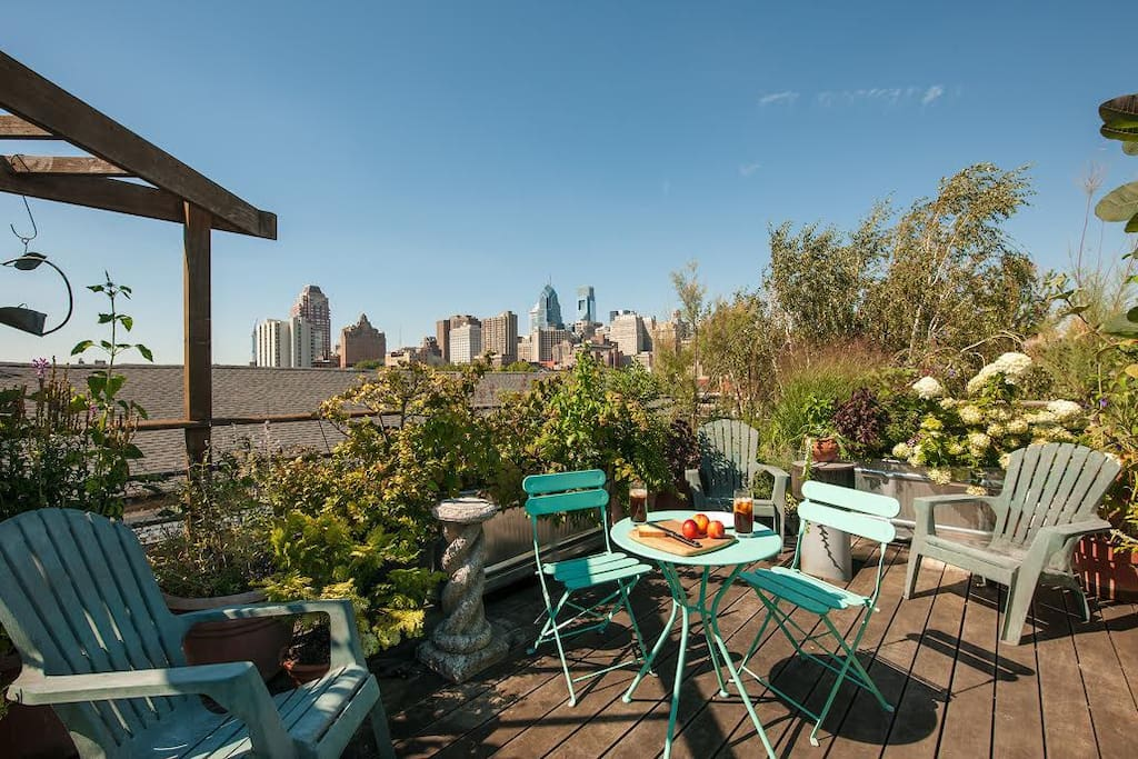 Private roof deck, with gorgeous plantings, overlooking the Philadelphia skyline and the Magic Gardens.
