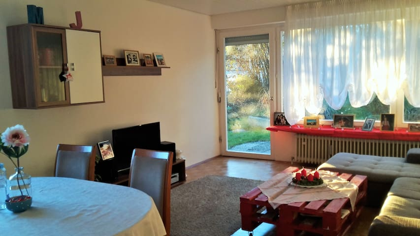 Sunny flat in beautiful three rivers city Passau - Passau