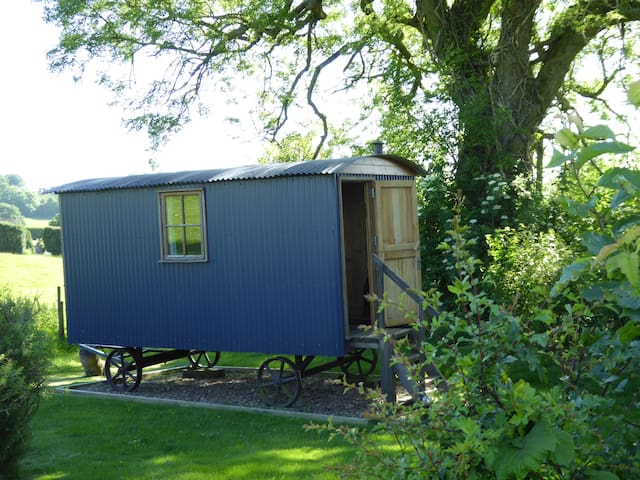Cosy Shepherds Hut with fantastic panoramic views