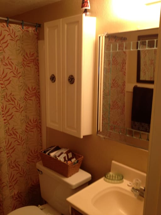 View of Bathroom.
