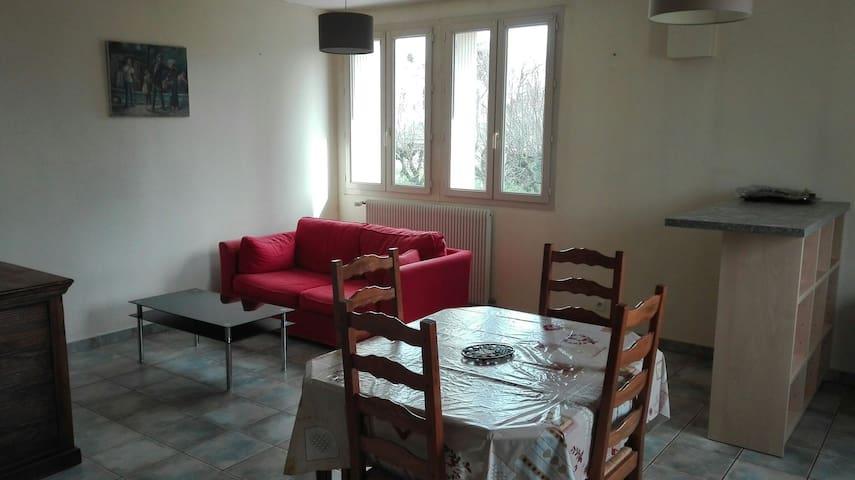 Appartement spacieux centre ville - Châtellerault - Apartment