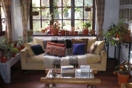 Típica casa cordillerana - Villa La Angostura - Bed & Breakfast