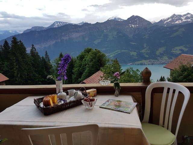 v. Hovering Above Interlaken (apt.2)