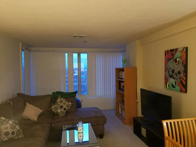 Perfect Downtown Hartford Apartment - Hartford - Apartamento