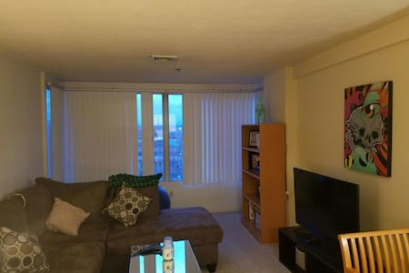 Perfect Downtown Hartford Apartment - Hartford