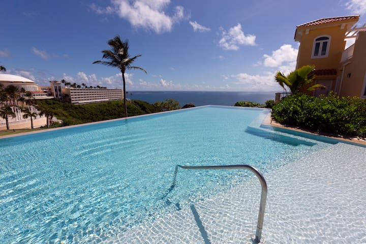1 Bedroom Ocean Front Las Casitas 5040