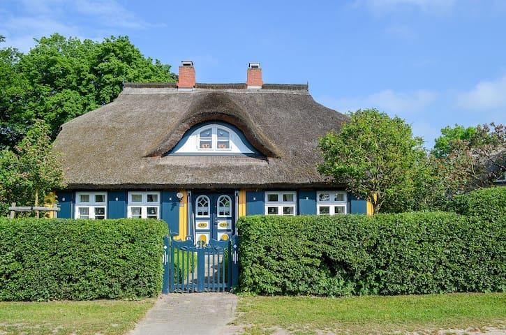 Reetdachkate Born - Born am Darß - House