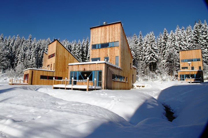 Spacious chalet in residential area, modern, luxury interior, large terrace