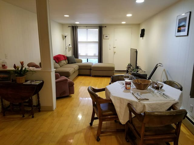 Great Coolidge Corner 1 BR - Brookline - Flat