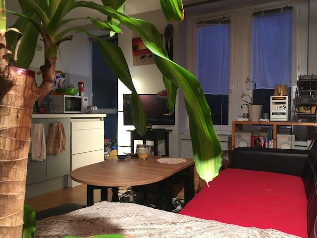 Bel Appartement bien situé Vauban/Wazemmes