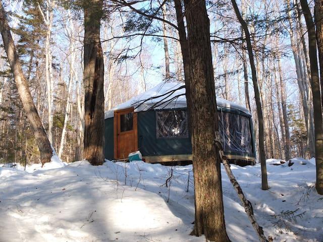 Mt. Cardigan Yurt - Alexandria - Yurt