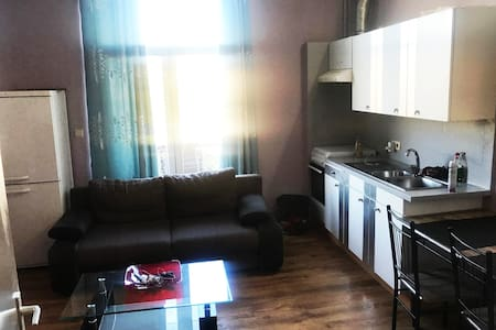 Entire Appartement with balcony Brussels
