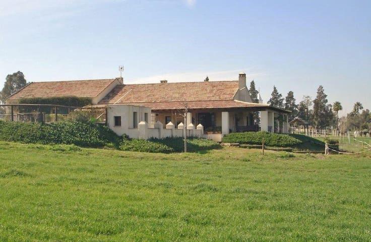 Finca Sansaba - Mairena del Alcor - Villa