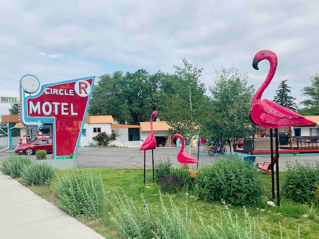 Clean, Central, Retro Inspired Salida Motel 17