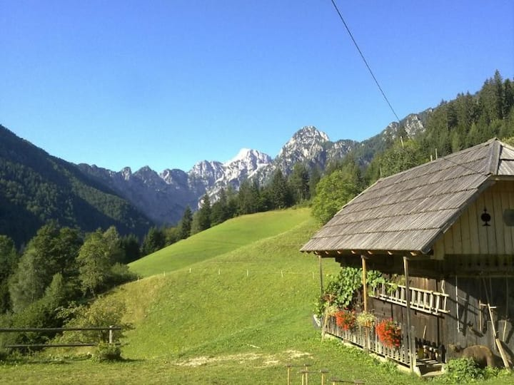 Apartment with a balcony in Logarska Valley