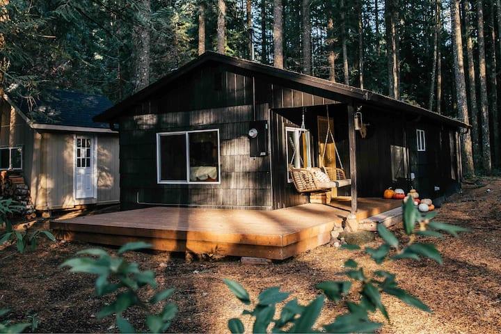 Curated Southwest Inspired Cabin, Studio & Sauna