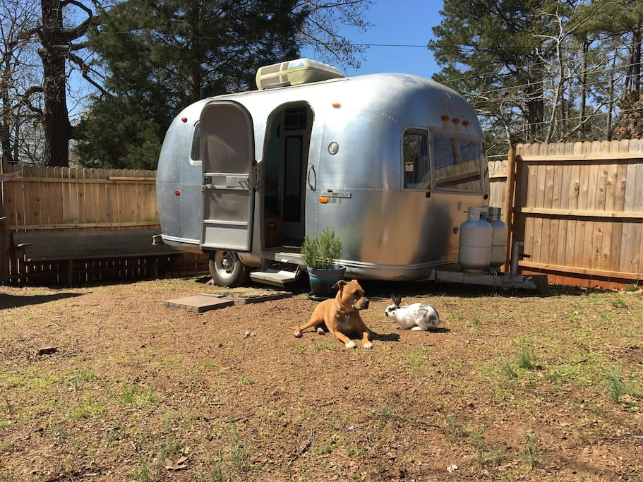 Nick and Ashley renovated this 1969 Airstream.  See the transformation happen on Instagram @cchomestead!
