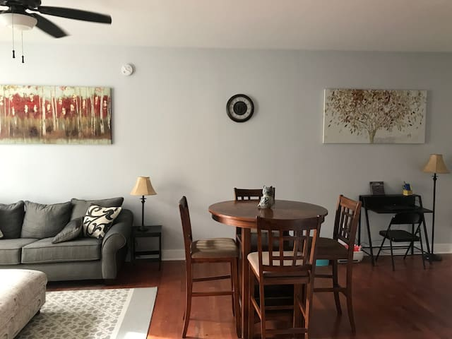 Beautiful and affordable downtown condo