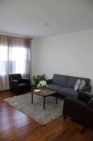 Full apt for 6 in a conveniently located area