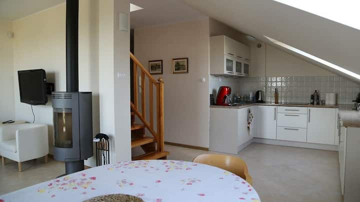 Sunny Apartment in Krynica Morska