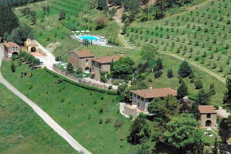 Fattoria Il Lago: a really wine-farm - Dicomano