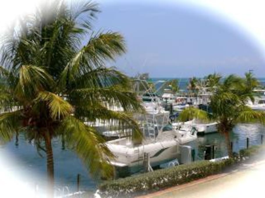 Key Largo Rooms For Rent