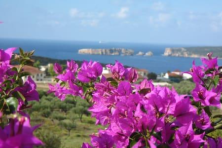 Magnificent mediterranean view - Pilos - 獨棟