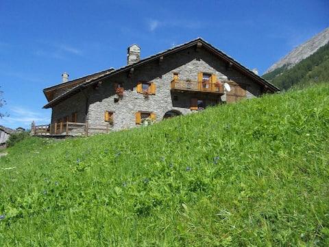 Le vieux Creton - Studios in the Alps
