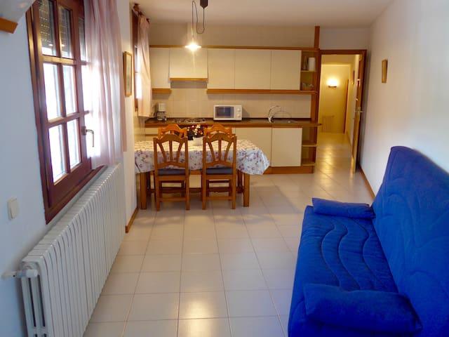 Apartamento en el centro de Ordino! (4 plazas) - Ordino - Kondominium