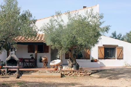 """Casa Rural """"El Viejo Olivo"""" Simples - Tortosa - Hus"""