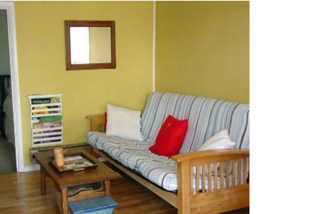 Living room with a full size futon