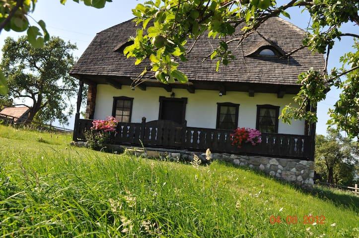 Grandma's House - Comuna Bran - Rumah