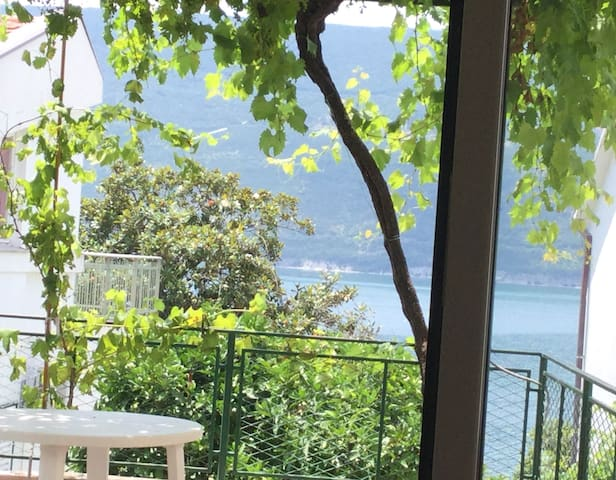 Miro's Cottage - few steps from the sea! - Herceg - Novi - Haus