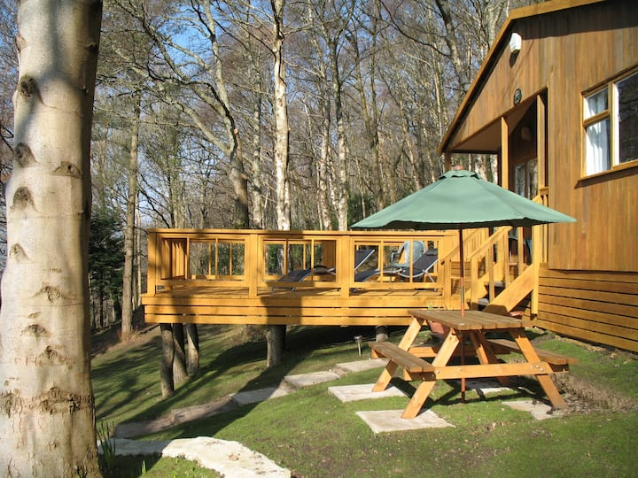 Bluebell Cottage/Cosy Cabin-near to Woodland Walks