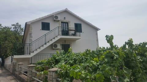 Greenleaf apartment in Lustica