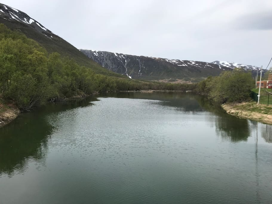 The river Vollelva is 1 kilometer away from the camper. Here is possible to get trout and salmon