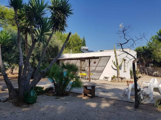 Casa Vacanze Torre Lapillo  Appartamento Corallo
