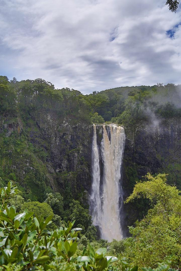 Rainforest waterfall adventure.