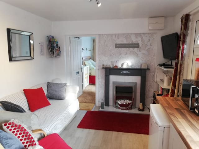 Cosy living area with electric fire and blow heater