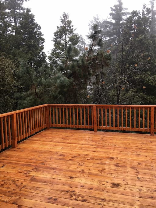The back deck. The trees and spa are here.