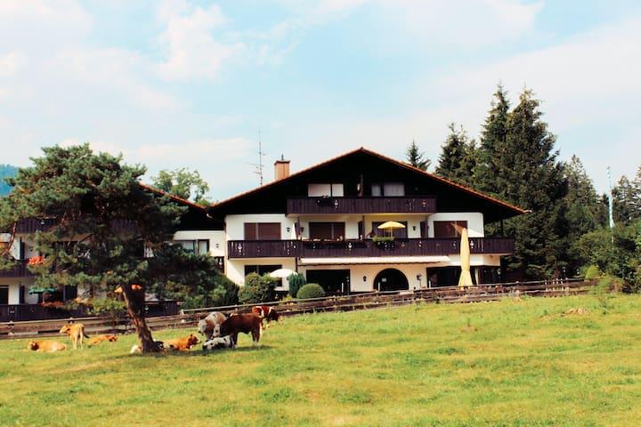 Уютные апартаменты с видом на Альпы - Farchant - Apartment