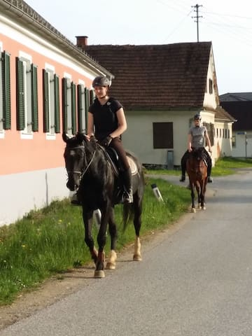 Unser Kleines Paradies für Ruhesuchende und Pferfefreunde,put Small Paradis for People Seeking just  Relax in the nature or  Discovering the Beautiful Landscapes on the back of our horses .Für Pferdeliebhaber ,Naturfreunde und Ruhesuchende!
