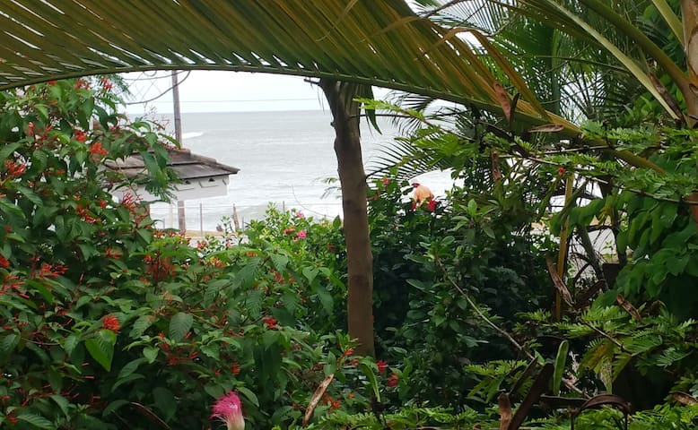 Cute B&B next to beach &town - Las Terrenas - Bed & Breakfast