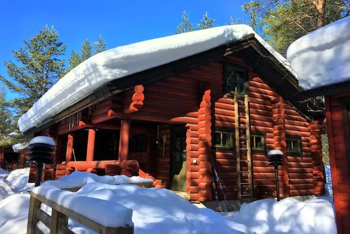 Laavu 13 Cabin