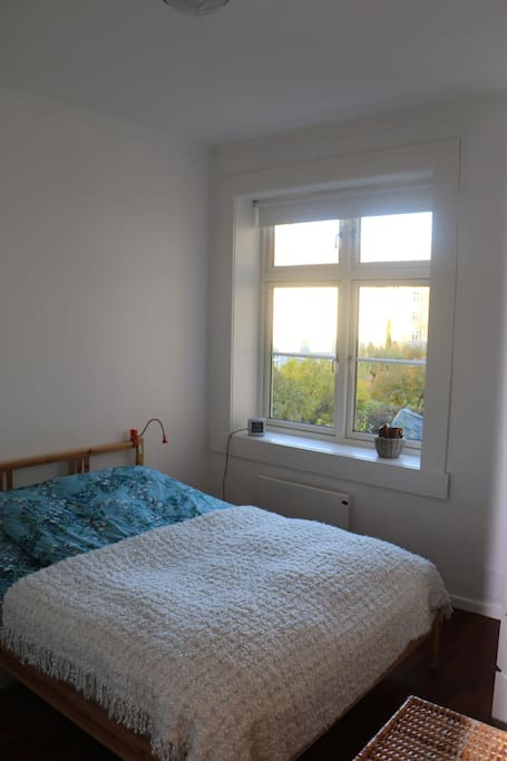 Bedroom window towards beautiful large backyard with several tables and benches (in the summertime)