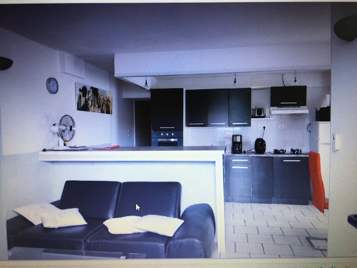 La Rochelle appartement 50 m2