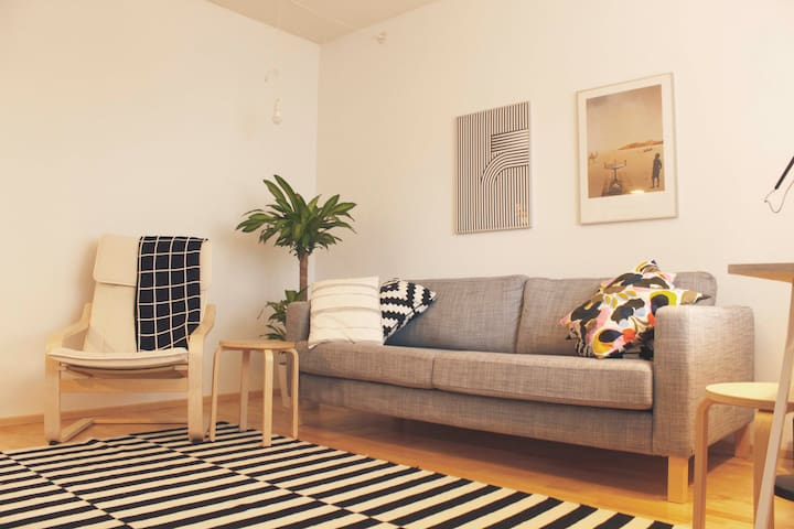 Pretty one bedroom flat in the center of Tampere