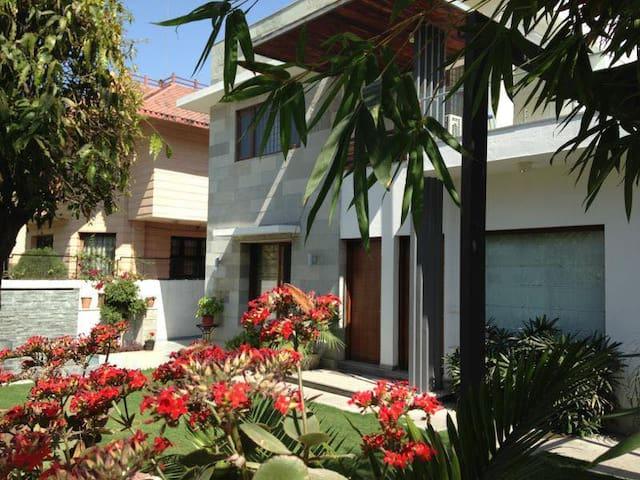 Gorgeous ,Spacious ,central, terrace apartment