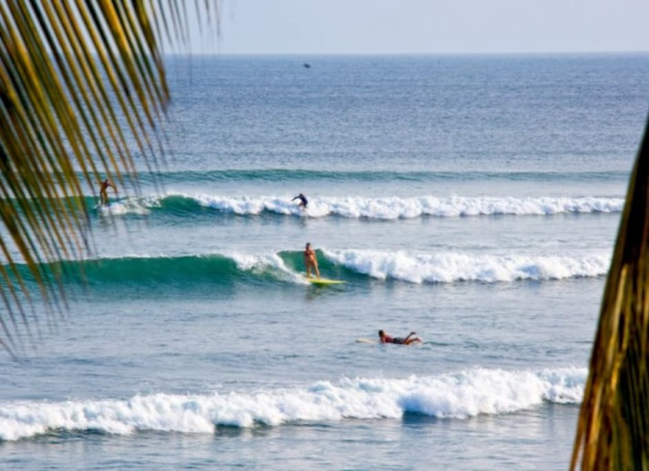 Anclote Surf and Paddle-boarding